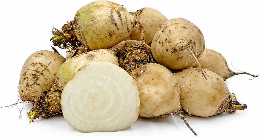 White Beets picture