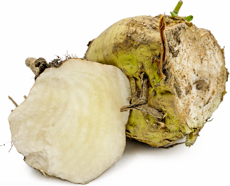 Sugar Beets picture