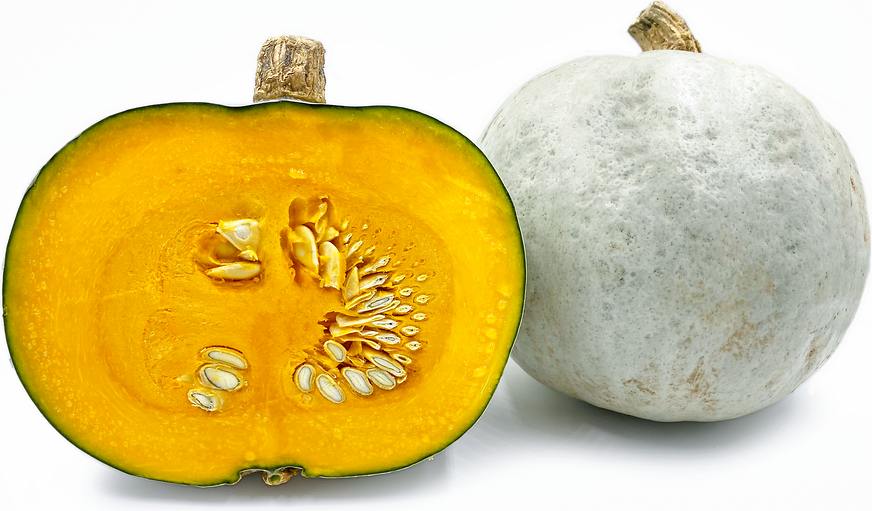 Crown Prince Squash picture
