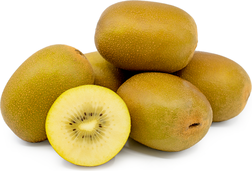 Gold Kiwi Information And Facts