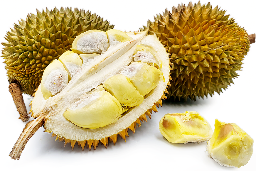 Malika Durian picture