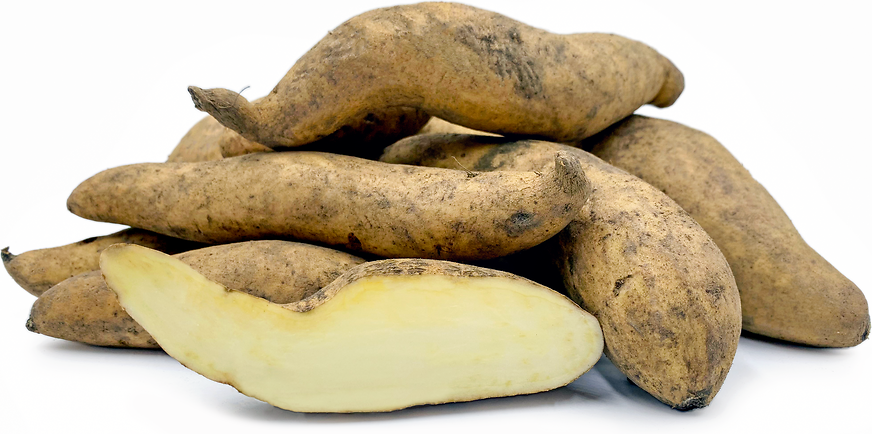 White Sweet Potatoes picture