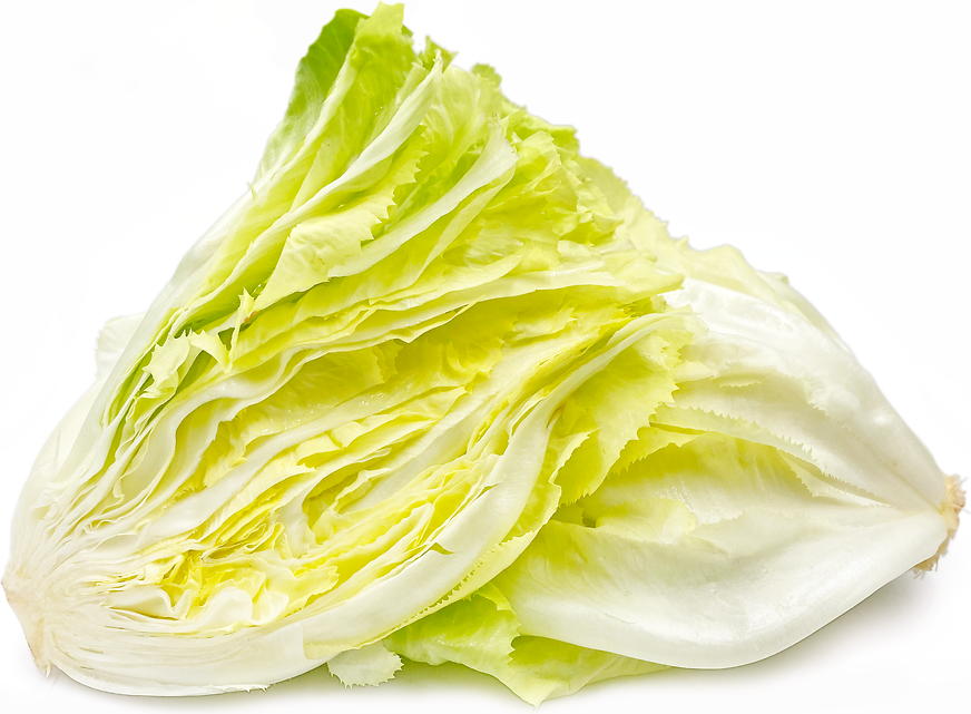 Bleached Escarole picture
