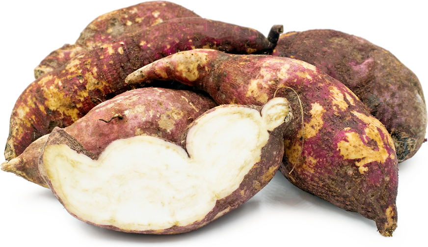 Boniato Sweet Potatoes picture