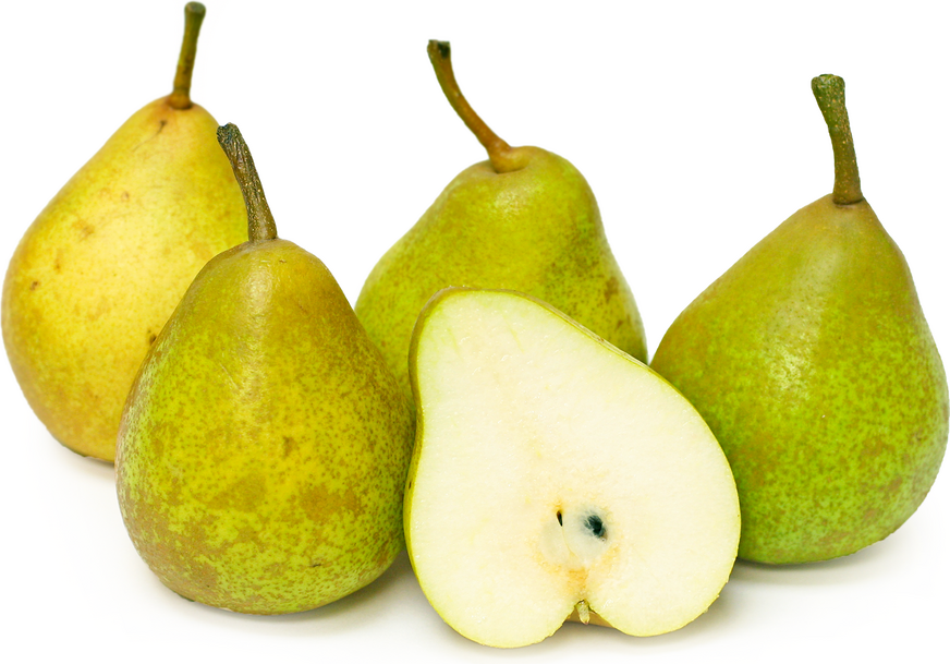 French Butter Pears picture