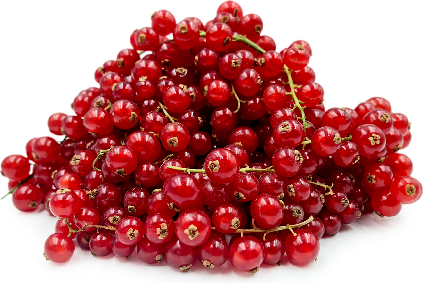 Red Currant Berries Information, Recipes and Facts