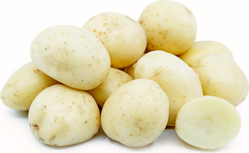 White Creamer Potatoes picture