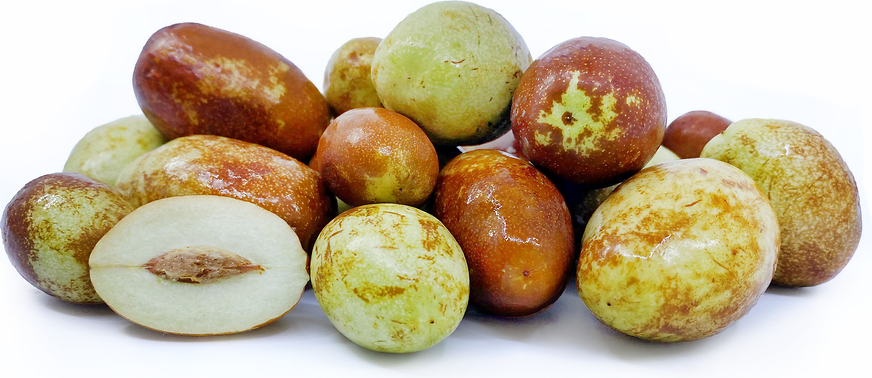 Long Jujube picture