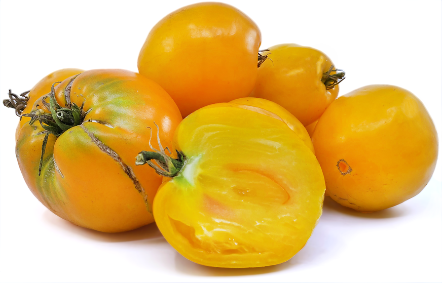 Golden King of Siberia Tomatoes picture