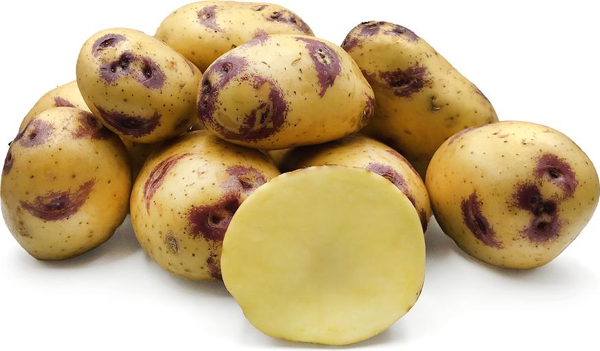 Golden Lime Potato Pearl