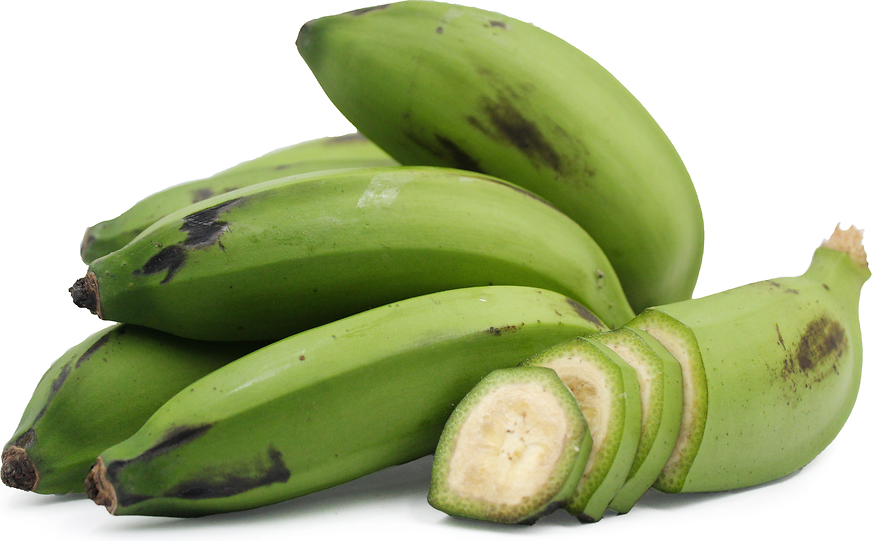 Guineo Bananas picture
