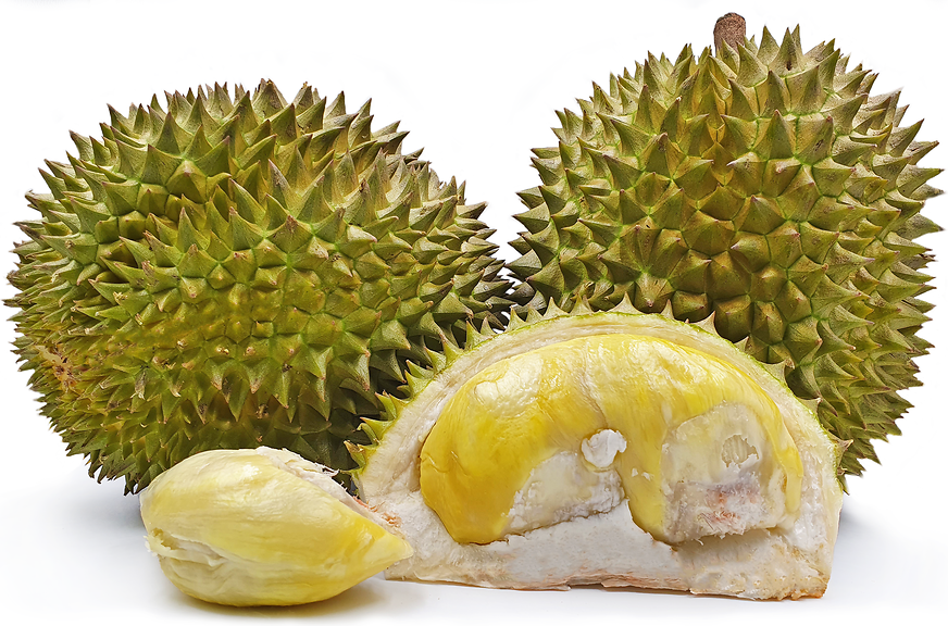 Matahari Durians picture