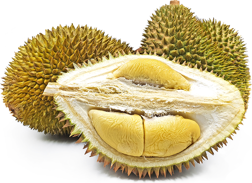 Sultan Durian picture