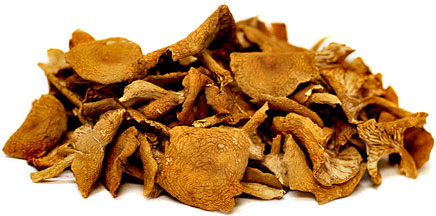 Dried Candy Cap Mushrooms picture