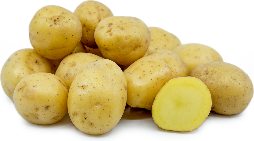 Yellow Creamer Potatoes picture