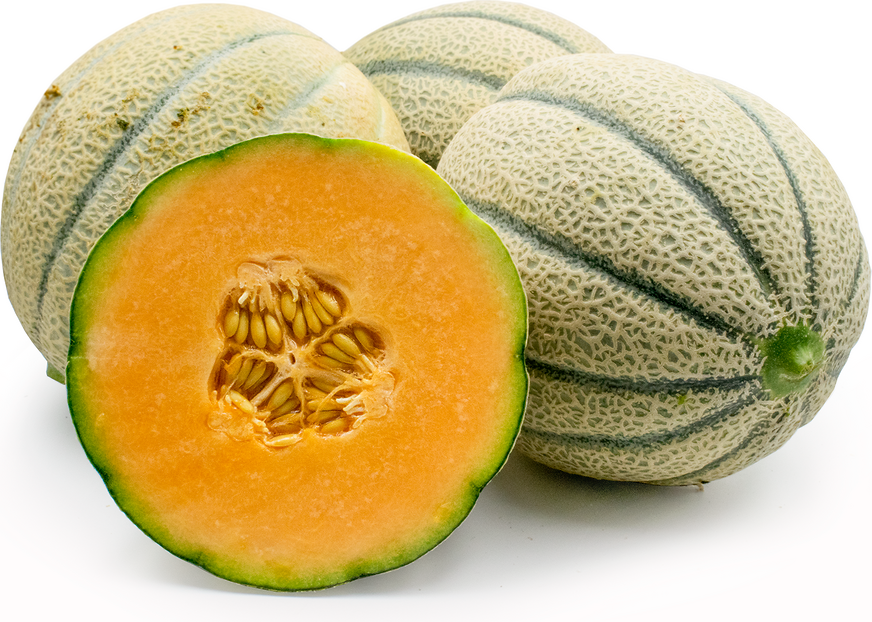 Tuscan Style Cantaloupe Information And Facts Discover ridgeway cantaloupe in : specialty produce