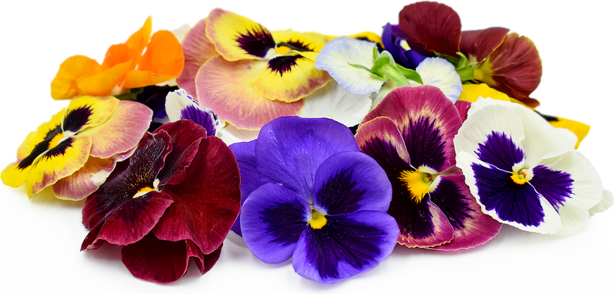 Pansy Flowers Information Recipes And Facts