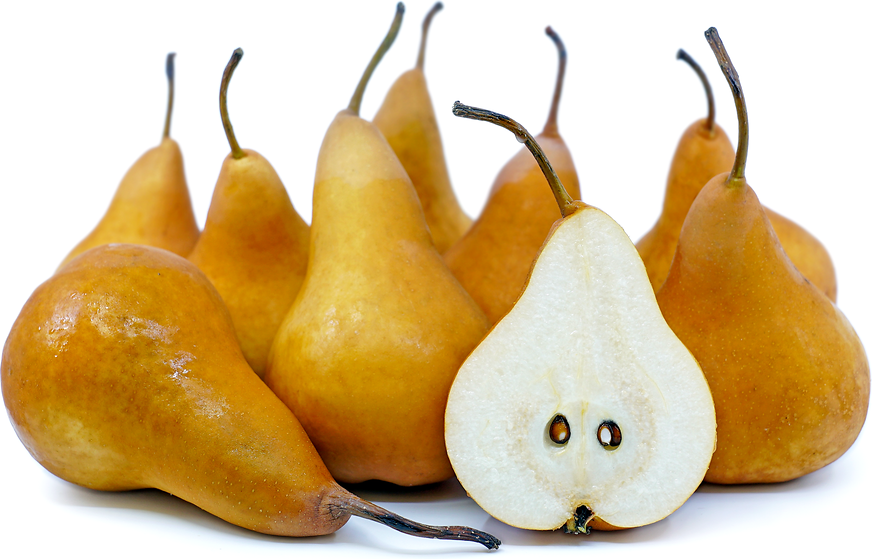 Bosc Pears picture