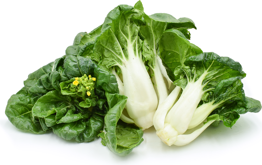 Baby White Choi Sum Cabbage picture
