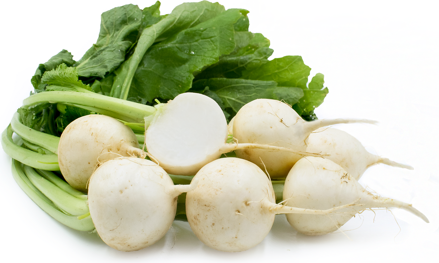 Baby Bunch Turnips picture