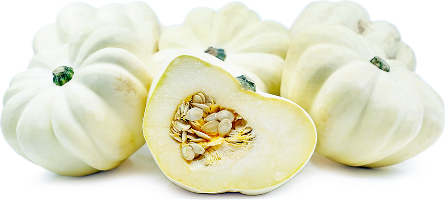 White Acorn Squash Information And Facts