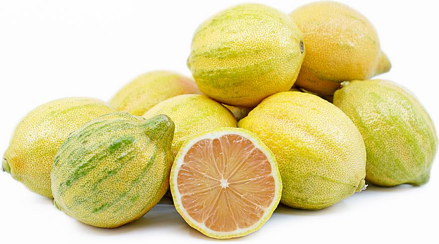 Lemon Slice Drop Hybrid Style Cap