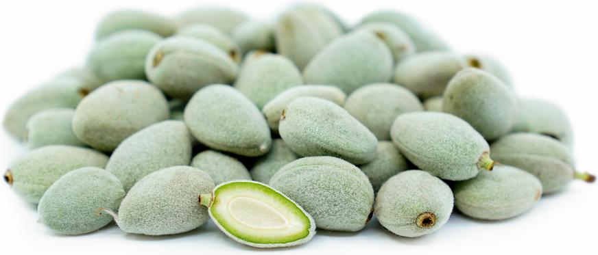 UNCLE CHAN 20 seed Moroheiya Edible leaves Soup Nutrition vegetable green