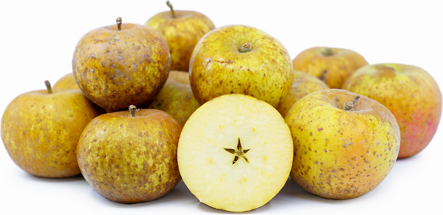 Ashmead's Kernel Apples picture