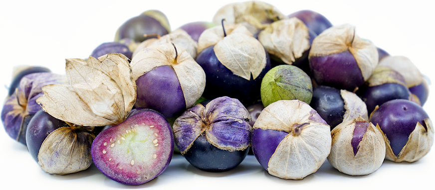 Purple Tomatillos Information And Facts