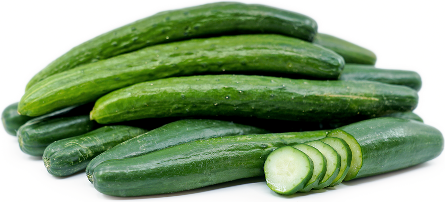 Japanese Cucumber picture