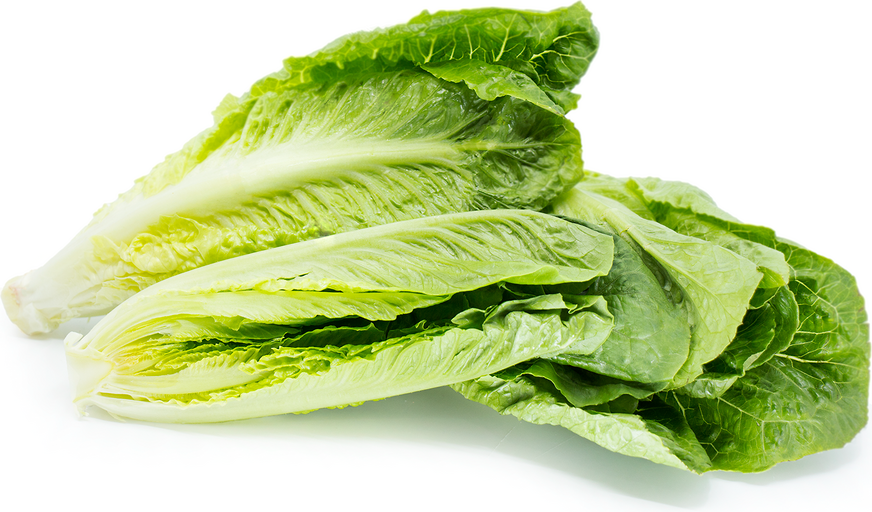 Romaine Hearts picture