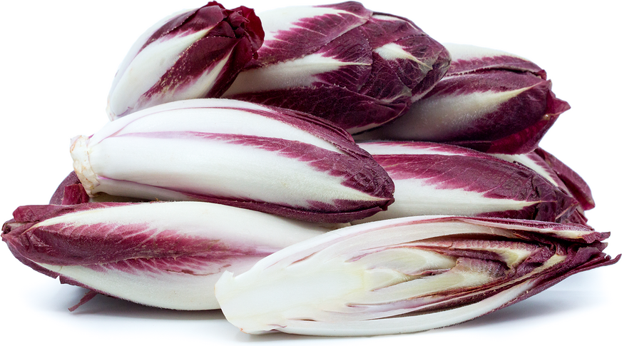 Red Belgian Endive picture