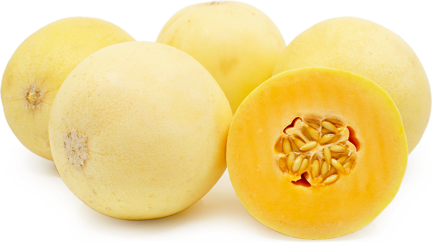 Honeyloupe Melon Information And Facts While cantaloupe's rough skin isn't exactly pretty, it's the inside that counts with these melons. specialty produce