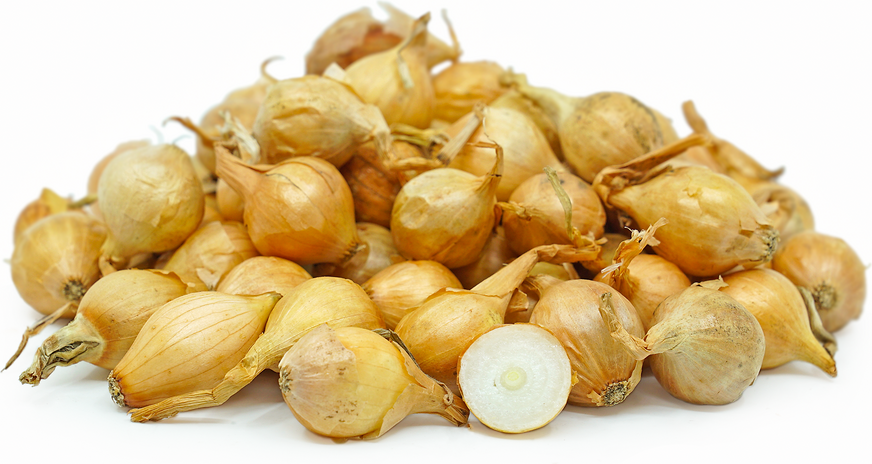 Gold Pearl Onions picture