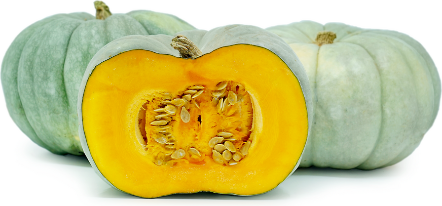 Blue Pumpkins Information And Facts
