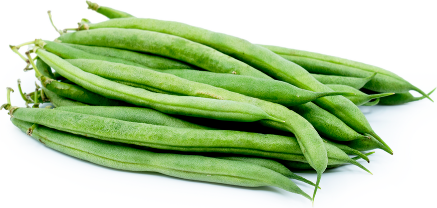Blue Lake Beans Information Recipes And Facts
