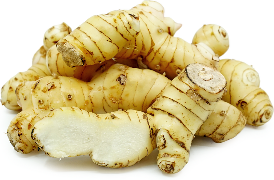 Galangal Root picture