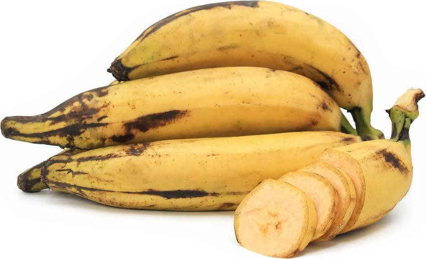 yellow plantain