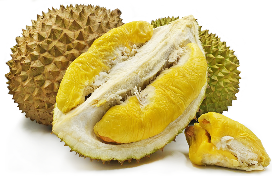 Musang King Durian picture