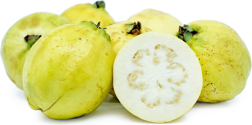 Mexican Cream Guavas picture