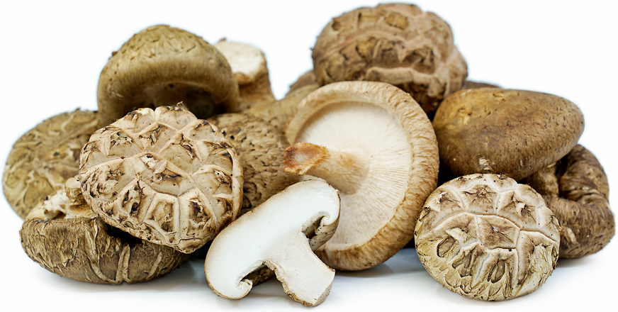Shiitake Mushrooms picture
