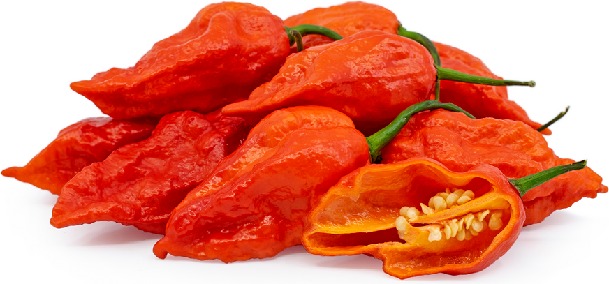 Red Ghost Chile Peppers Information Recipes And Facts