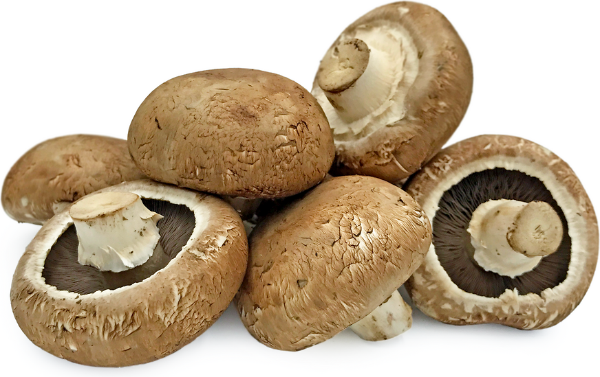 Portobellini Mushrooms picture