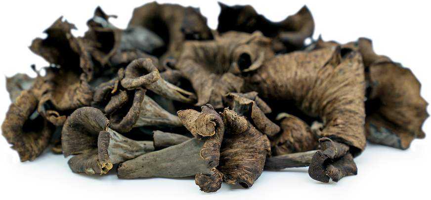 Black Trumpet Mushrooms picture