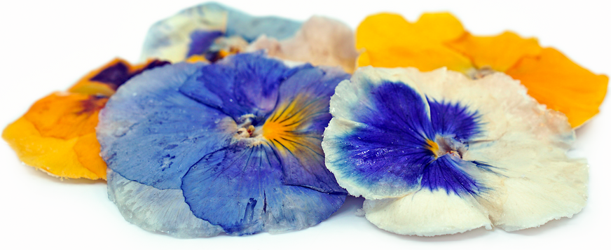 Flowers Crystallized Pansy Information And Facts
