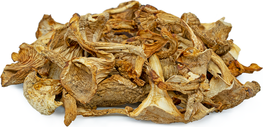 Dried Chanterelle Mushrooms picture