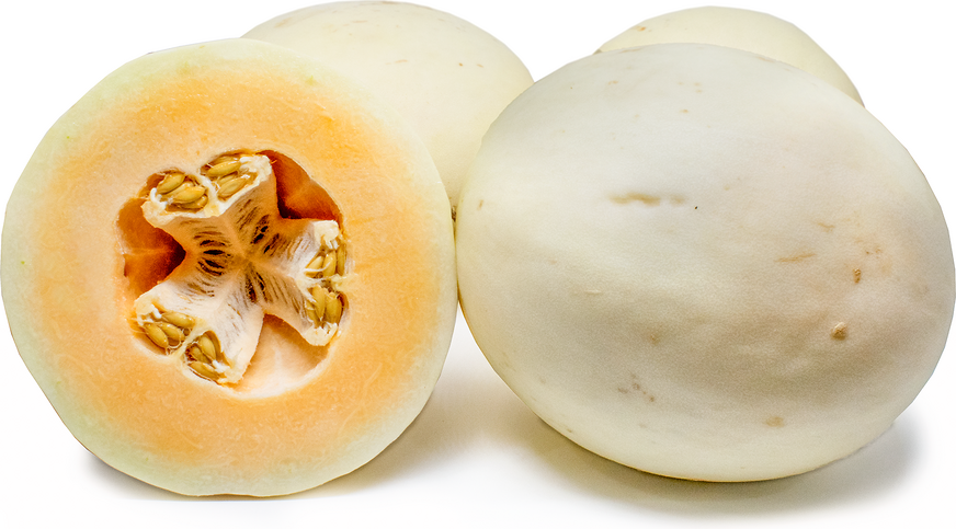 Orange Fleshed Honeydew Melon Information And Facts 8 years ago8 years ago. specialty produce