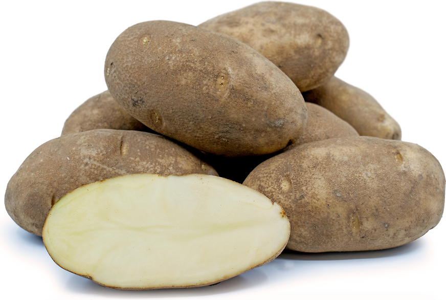 Russet Potatoes picture