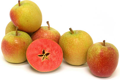 Mountain Rose Apples picture