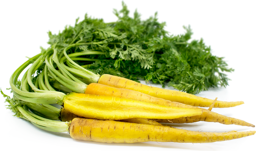 Baby Yellow Bunched Carrots picture